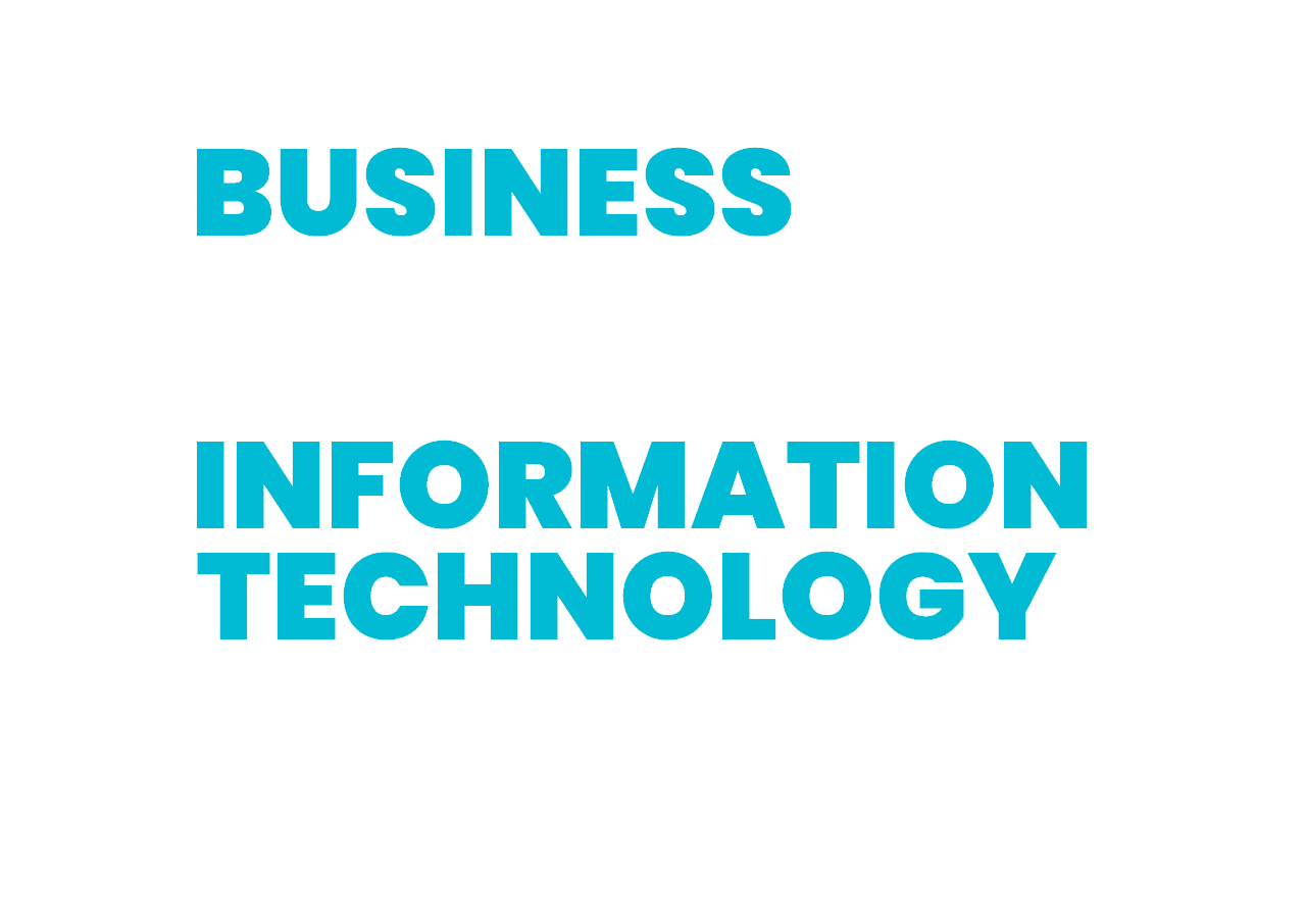 business consulting information technology consulting Effixio conseil informatique